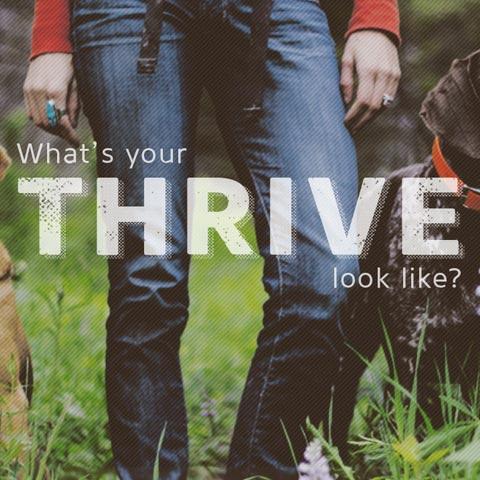 thriveidaho | Website & 2015 Campaign